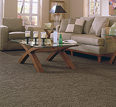 Carpet Brands Pompano Beach Fl Floors To Go Pompano